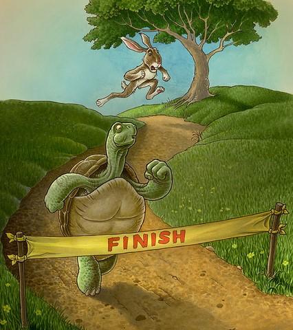 hare&tortoise